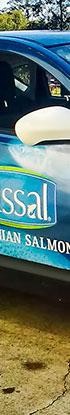 Tassal Salmon wrap
